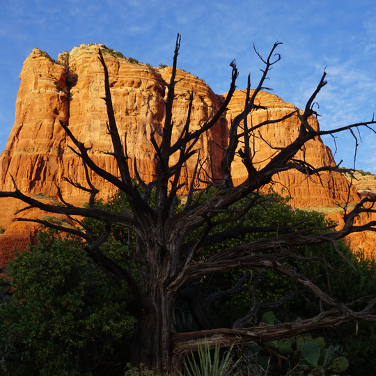 Coconino National Forest, Bell Rock