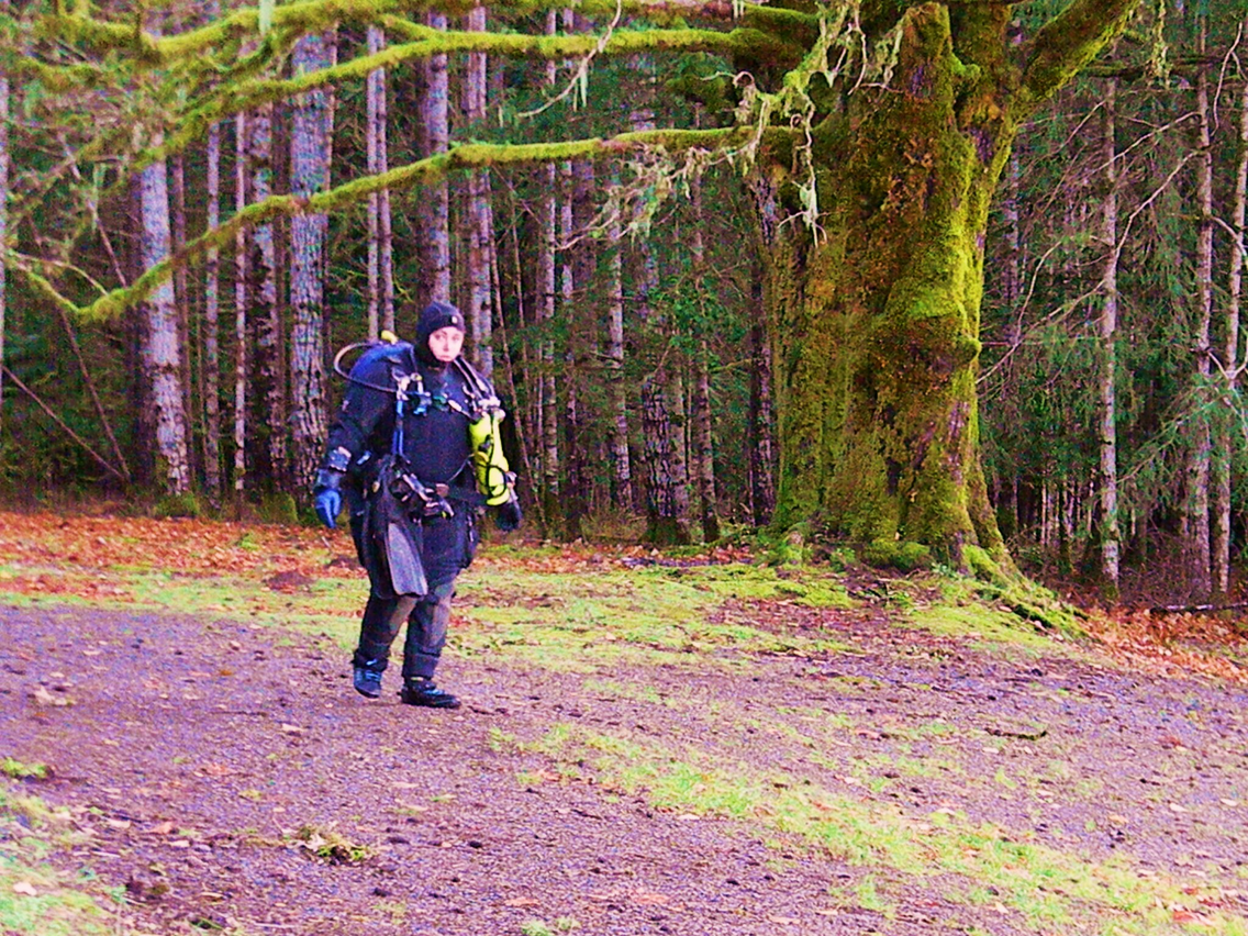 Olympic National Park