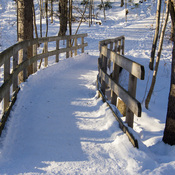 Sentier en hiver