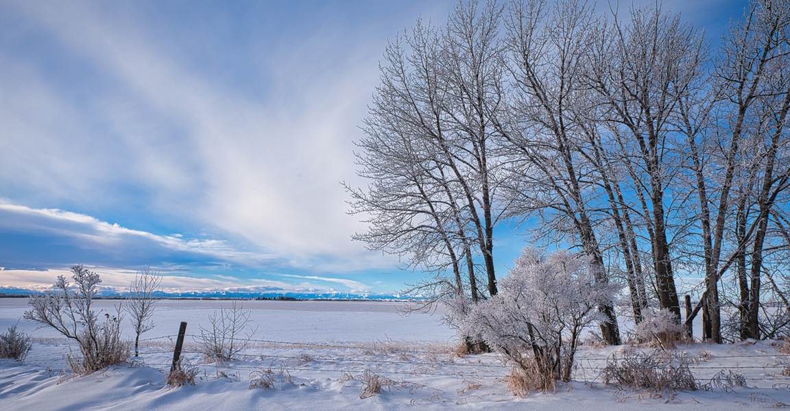 Winter on the Prairies