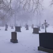 Le smog ce matin