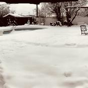 Snow covered backyard