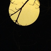 lune ou luminaire...