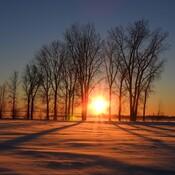 Soleil d'hivers T-R, P.Q