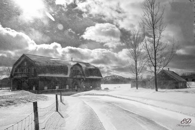 Journée froide et venteuse Bromont, QC