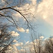 Un ciel superbe