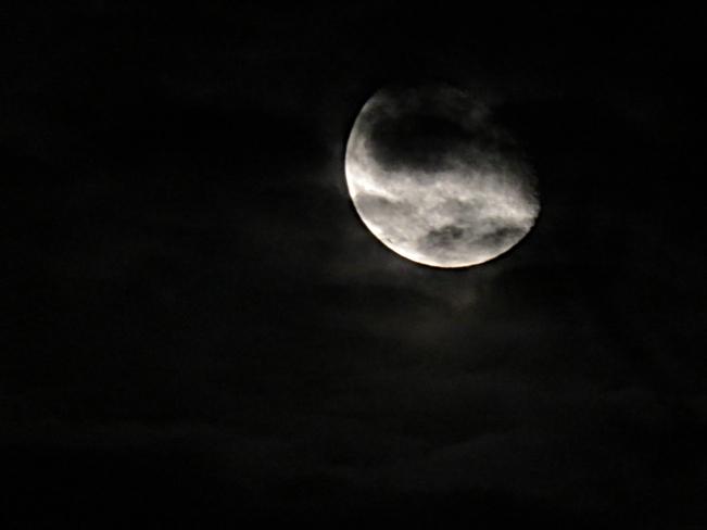 Full Moon Mississauga, ON