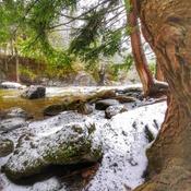 Une randonnée printanière au Parc des sept chutes