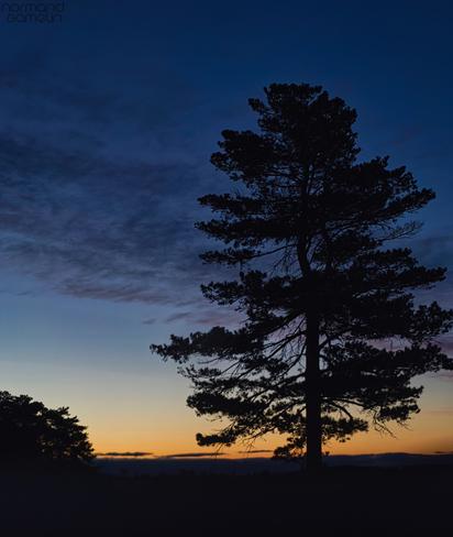 Le soleil se lève Napierville, Québec, CA