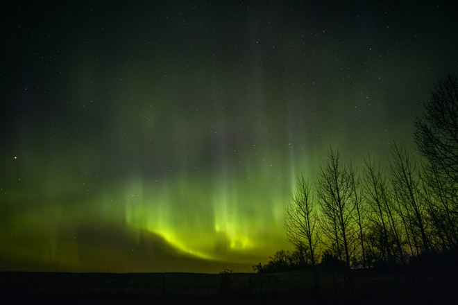 Our Majestic Night Sky Sundre, AB