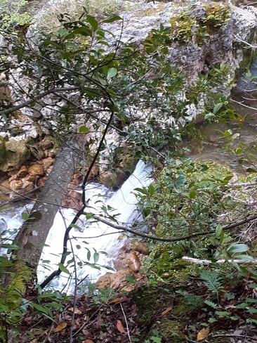 siagne river Saint-Vallier-de-Thiey, PAC