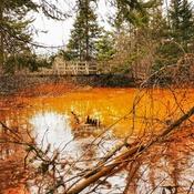 Le lac orange du Marais du Nord