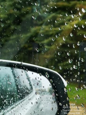 Rain, rain, rain! 10C Thornhill - April 28 2021 Thornhill, ON