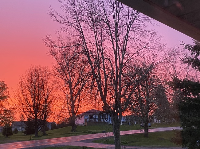 Red Sky this morning Lyn, ON