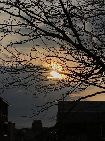 Sunny? Cloudy? Rainy? Etobicoke, Ontario, CA