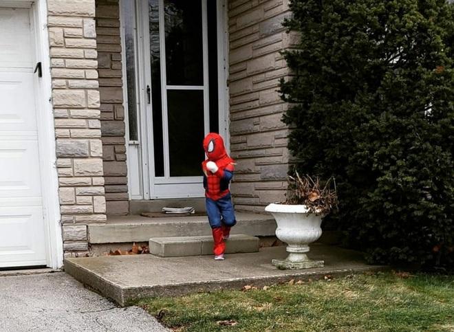 spiderman Burlington, ON