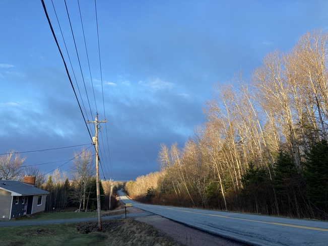 Morning color contrast 856 New Russell Rd, New Ross, NS B0J 2M0, Canada