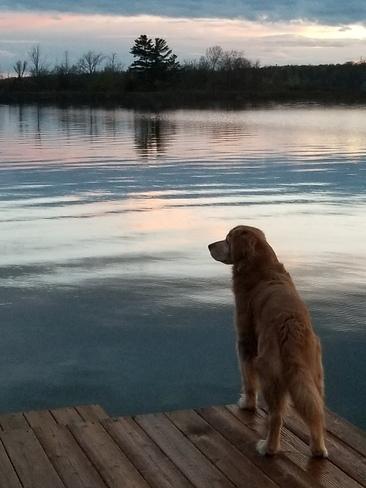 Surveying Sunset! Codes Corner, ON