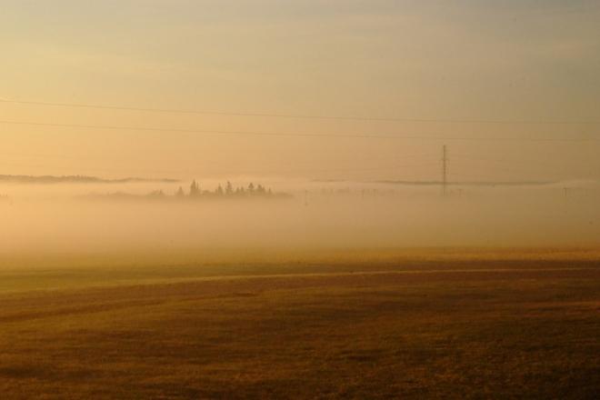Morning Fog at Leduc Leduc, AB