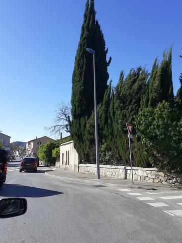 cyprès de Provence Pégomas, PAC