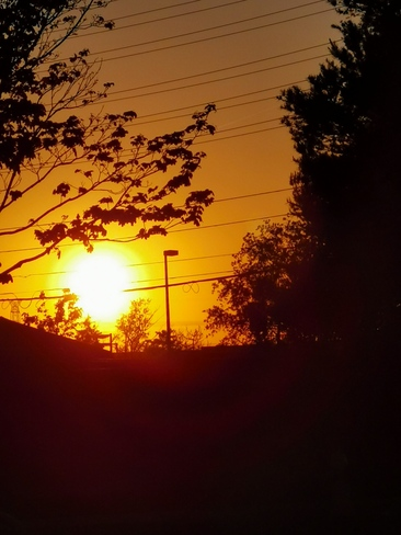 Golden sunset clear sky 18C 8:20pm Thornhill - May 13 2021 Thornhill, ON
