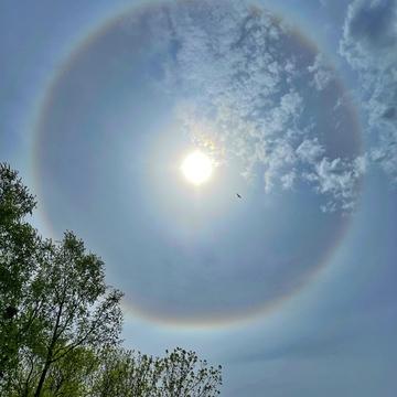 Soleil avec halo