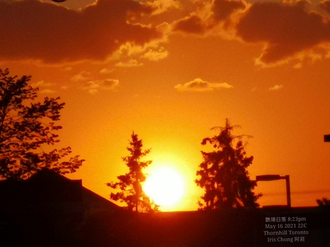Summer feel 22C - Brilliant orange sunset 8:23pm Thornhill May 16 2021 Thornhill, ON