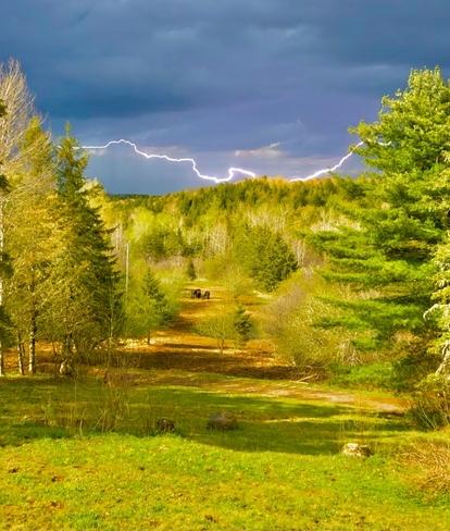 thunder lightning above the horses with sunshine crazy !! Salt Springs, Nova Scotia, CA