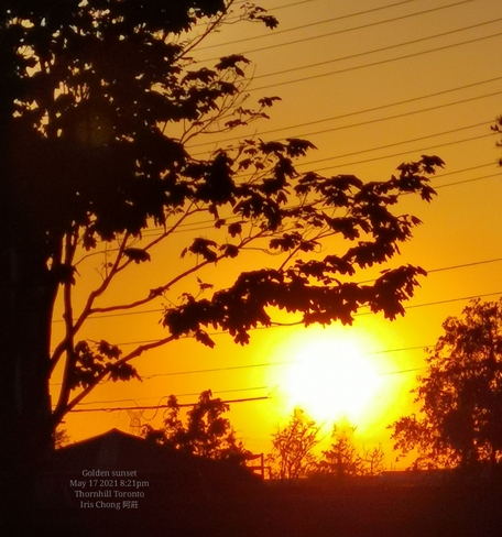 Summer feel - Golden sunset 21C 8:21pm Thornhill May 17 2021 Thornhill, ON