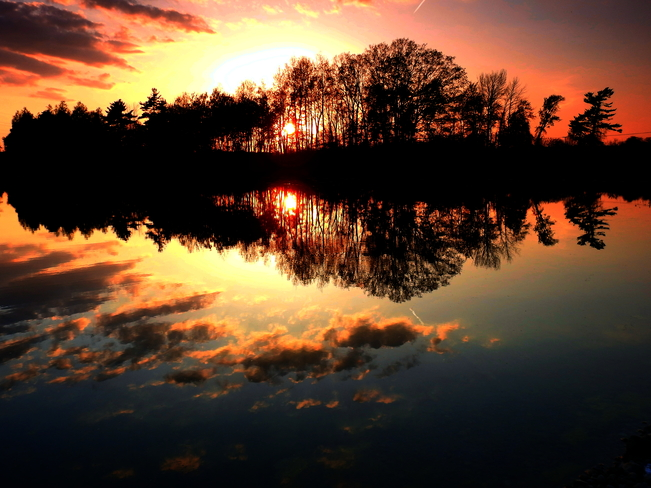 Edworthy Road Sunset 1 1508-1330 Regional Rd 71, Cambridge, ON N1R 5S5, Canada
