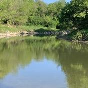 Allow Nature to teach you stillness.