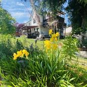 West Coast Spring Garden