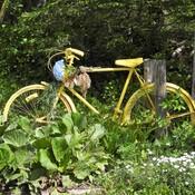Un beau vélo ancien