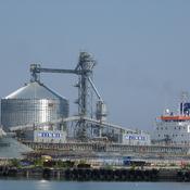 Sharing Port Oshawa