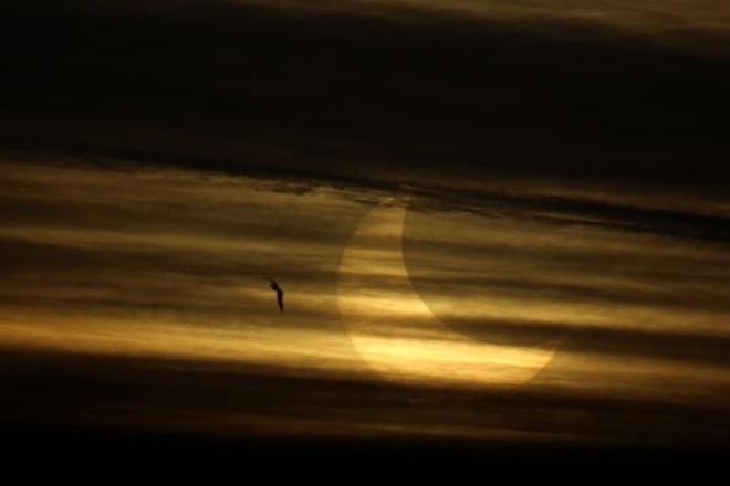 Éclipse partielle Lavaltrie Lavaltrie, QC