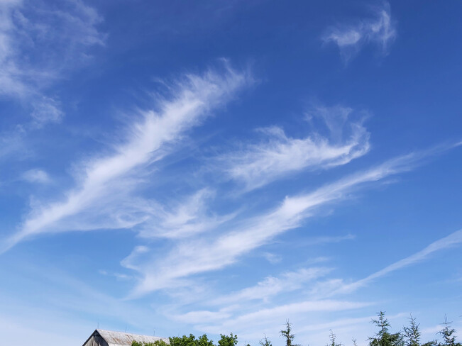 Mare's Tails in formation Osgoode, ON