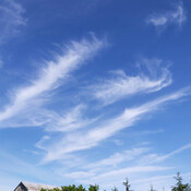Mare's Tails in formation