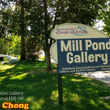 June 12 2021 22C Nice day! Mill Pond Gallery - Richmond Hill