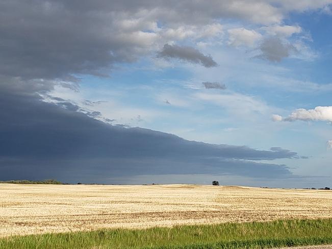 leaving the storm Govan, SK