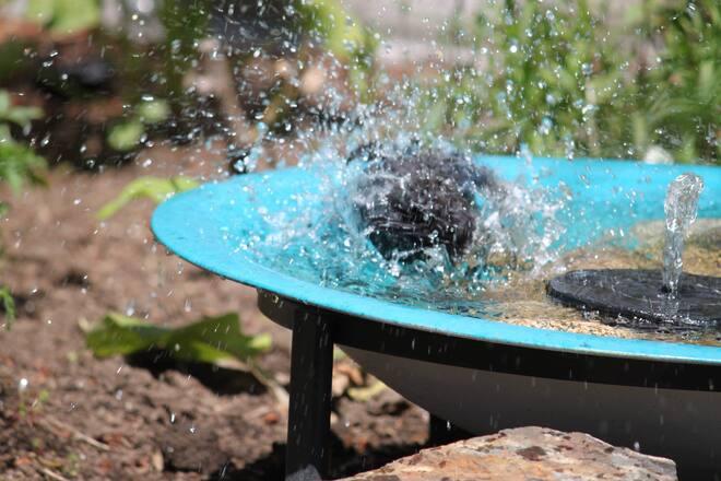 bath time Fraser Hwy FS 264 St, Langley Twp, BC V4W, Canada