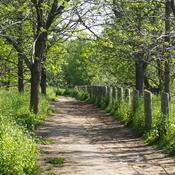 Scarborough Crescent Park