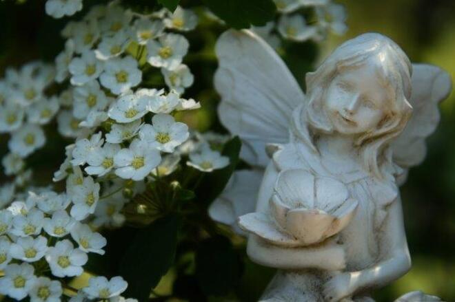 Fairy Wedding Erin, ON