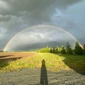 Chilliwack Rainbow