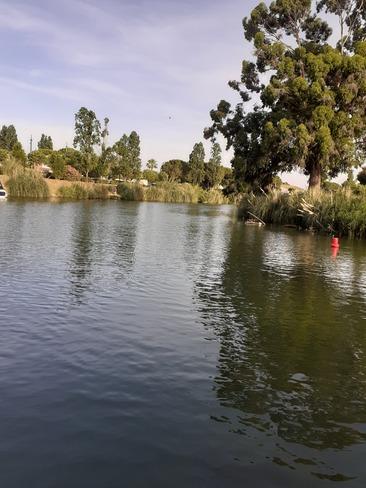 siagne river Mandelieu-la-Napoule, PAC