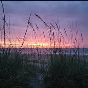 Un merveilleux matin ce lève