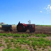 Old Time Farming Saskatchewan
