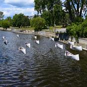 Bateaux qui flottent