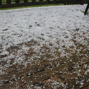 This was the hail storm in Perth Andover NB June 19 2021
