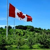 O Canada...