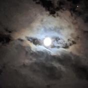 le regard du ciel